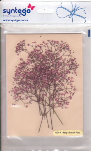 Syntego Baby's Breath Pink