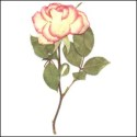 Large Rose with stem Light Pink