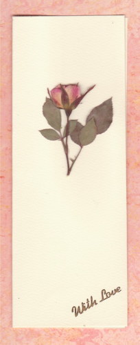 Pressed Real Rose Card