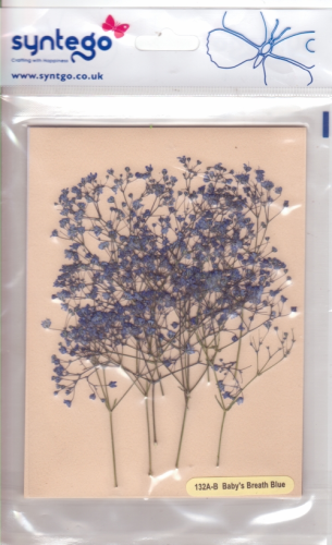Syntego Baby's Breath Blue