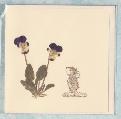 Violas with Mouse
