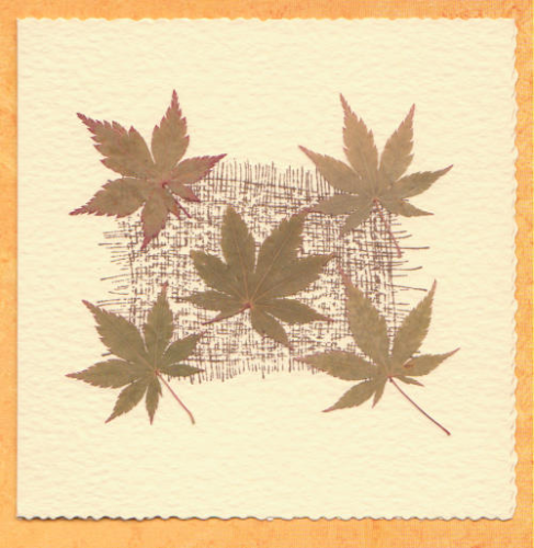 Handmade Card Autumn Leaves
