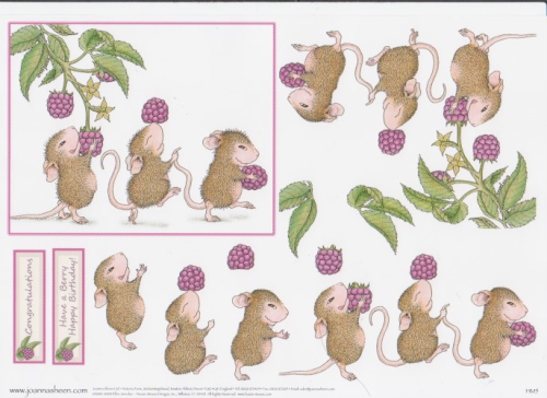 House Mouse Decoupage - Fruit & Nut 1