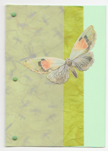HB27 Handmade Birthday Card - Butterfly Layered - Green