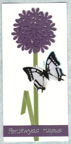 HB146 Handmade Welsh Birthday Card Allium with Butterfly - Penblwydd Hapus