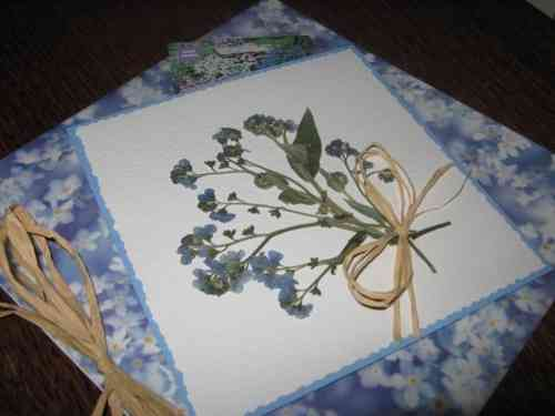 "Luxury Handmade Card - Say it with Flowers ""Forget Me Nots with Seeds"""