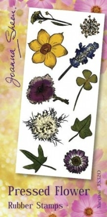 Joanna Sheen Pressed Flower Unmounted Rubber Stamp Set  - Narcissi